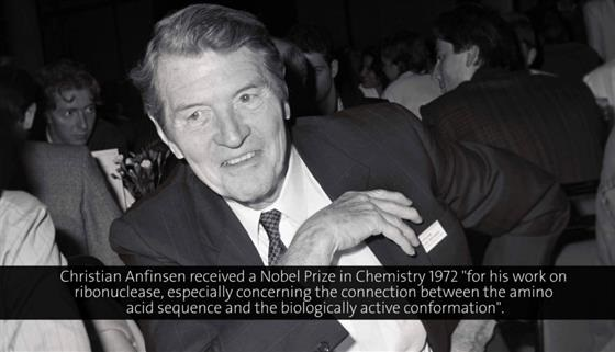 Christian Anfinsen (1983) - Peptide Synthesis - A Useful Tool in the Study of Protein Structures and Function