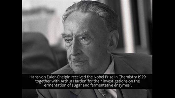 Hans von Euler-Chelpin (1958) - Chemical Structure and Biochemical Effects (German presentation)